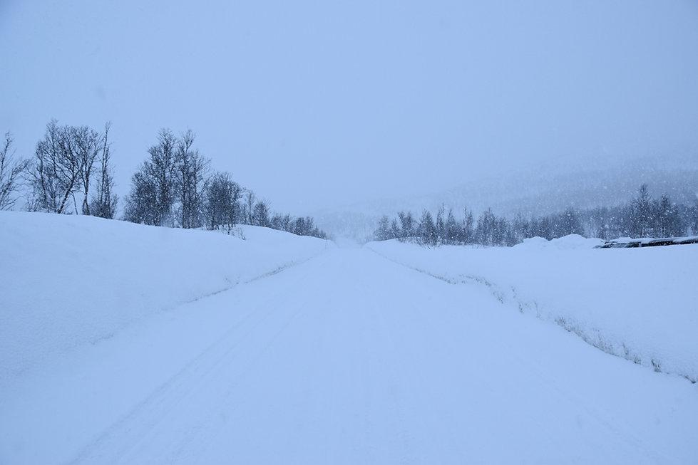 Norvège - Senja - route hiver