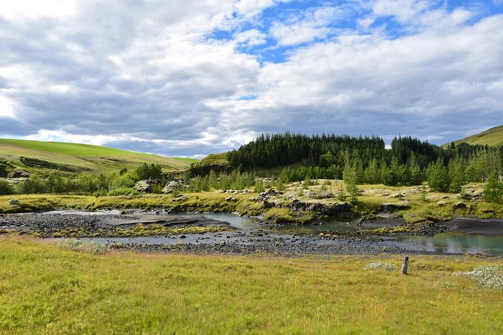 islande iceland paysage landscape river rivière forêt forest