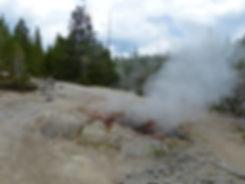Yellowstone National Parc Norris Geyser Basin Puff n stuff geyser