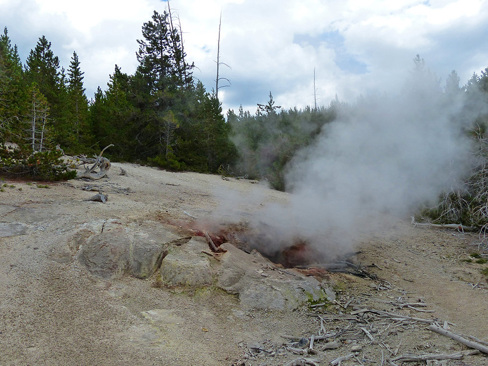 Yellowstone National Parc Norris Geyser Basin Puff n stuff geyser