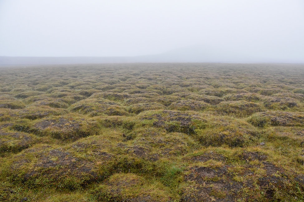 Islande iceland myvatn krafla formations motifs pelouse gazon herbe