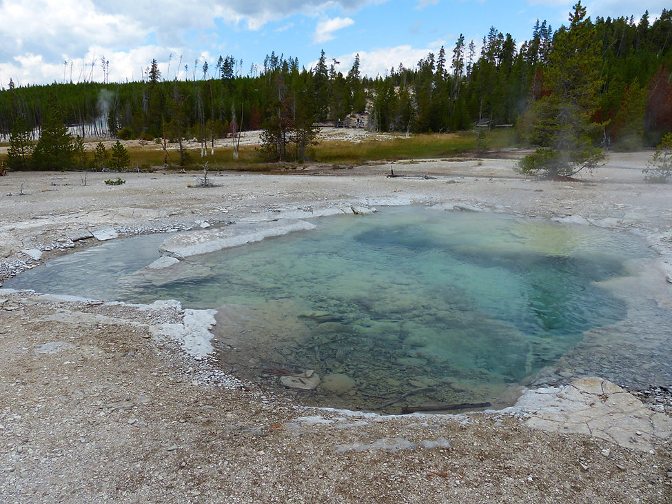 Yellowstone National Parc Norris Geyser Basin Crater Spring