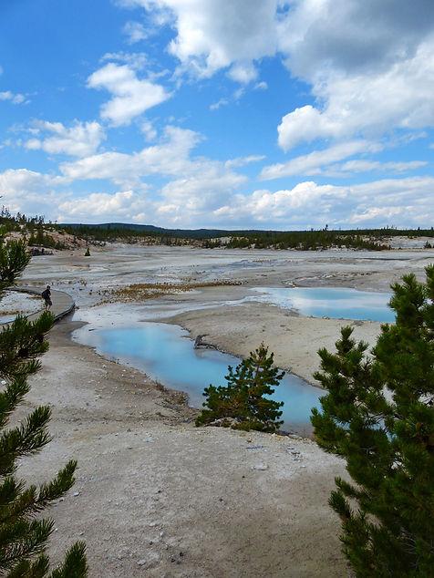 Yellowstone National Parc Norris Geyser Basin Cerulean Pool