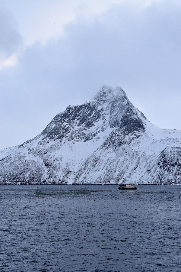 Norvège - Senja - Mefjorden