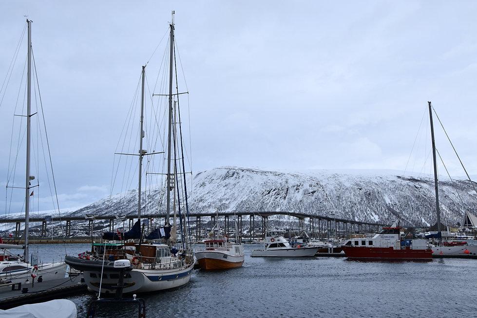 Norvège - Tromsø - Port - pont