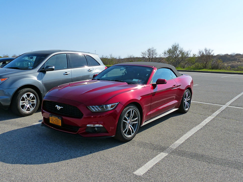 Ford Mustang 2015 convertible red rouge