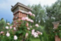 Lac de Garde Sirmione jardins