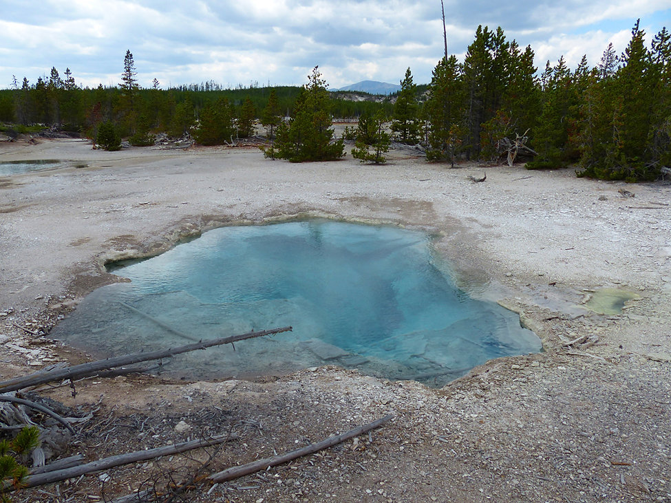 Yellowstone National Parc Norris Geyser Basin Mud Spring