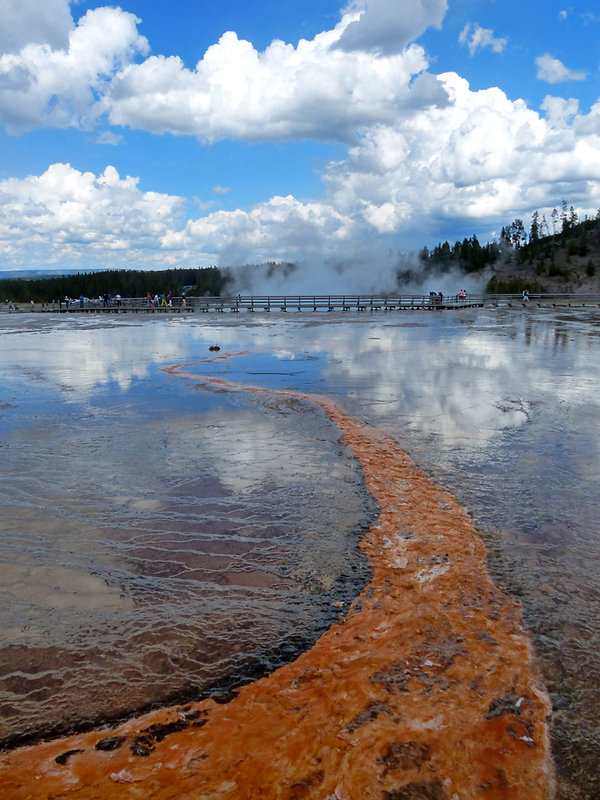 Yellowstone National Park Midway Geyser Basin
