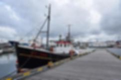 Reykjavik port