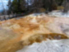 Yellowstone National Parc Mammoth Hot Spring Dryad Spring