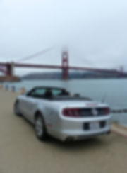 San Francisco Golden Gate Mustang