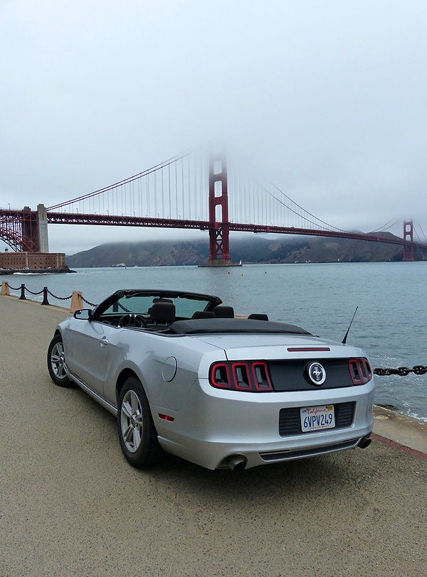 San Francisco Golden Gate Mustang