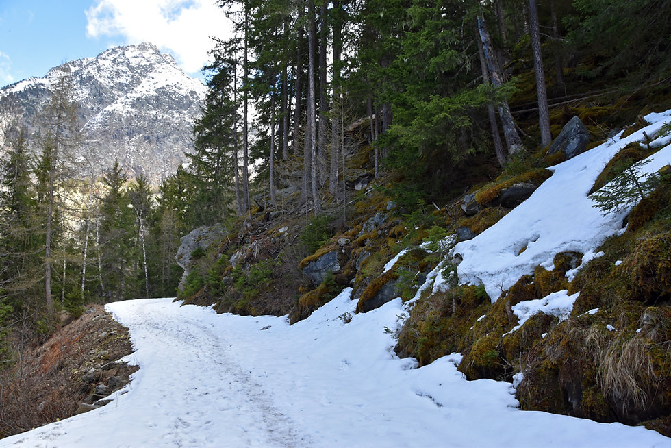 Chamonix - Rochers des Mottets