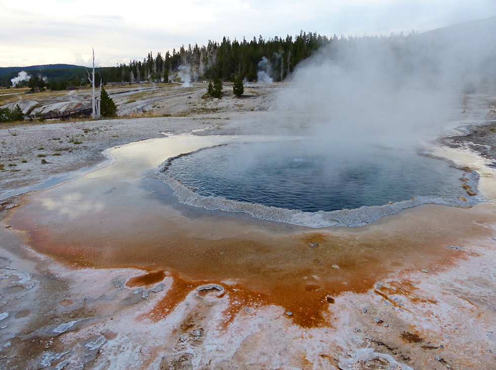 Yellowstone National Park Upper Geyser Basin Crested Pool