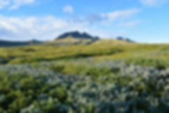 skaftafell national park iceland islande