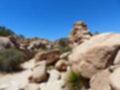 Joshua Tree National Park Hidden Valley Trail