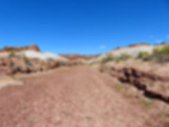 Grand Straircase Escalante National Monument Nautilus