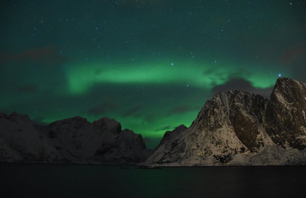 Norvège - Lofoten - Moskenesøya - Reinefjorden - Aurores boréales