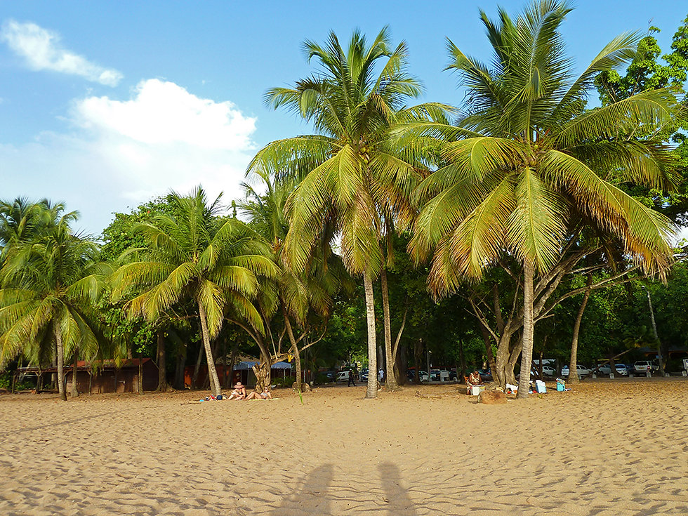 Guadeloupe Plage Grande Anse