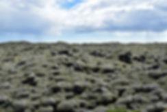Eldhraun islande iceland coulée lave champ mousse lava field