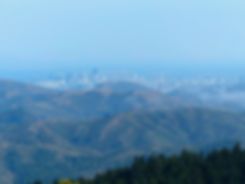 Marin County - Panoramic Highway