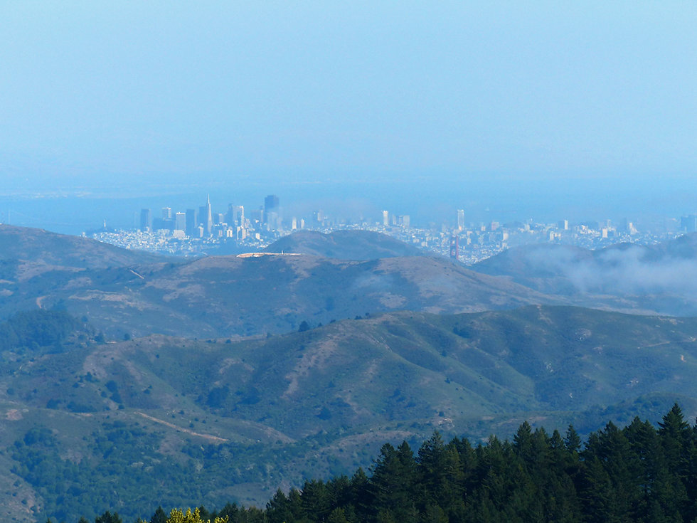 Marin County - Panoramic Highway
