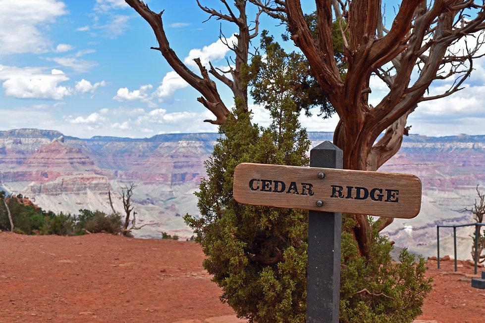 Arizona - Grand Canyon National Park - South Kaibab Trail - Cedar Ridge