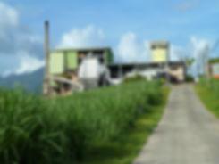 Guadeloupe - Distillerie Bologne