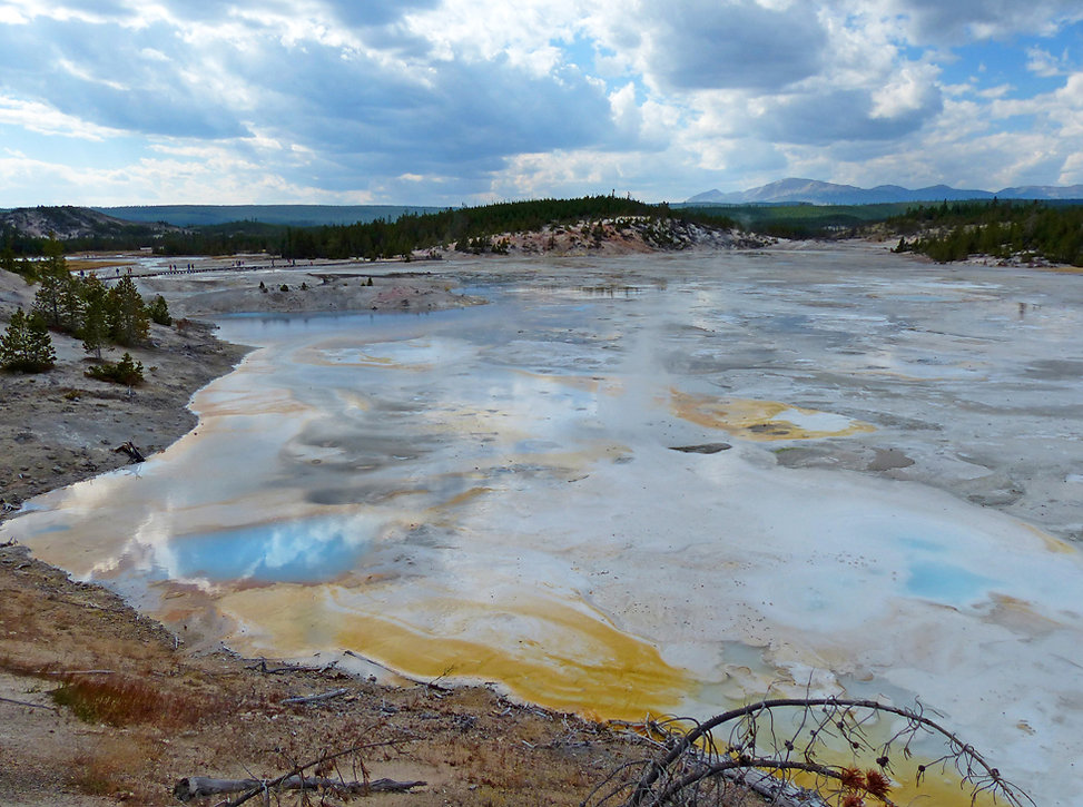 Yellowstone National Parc Norris Geyser Porcelain Basin