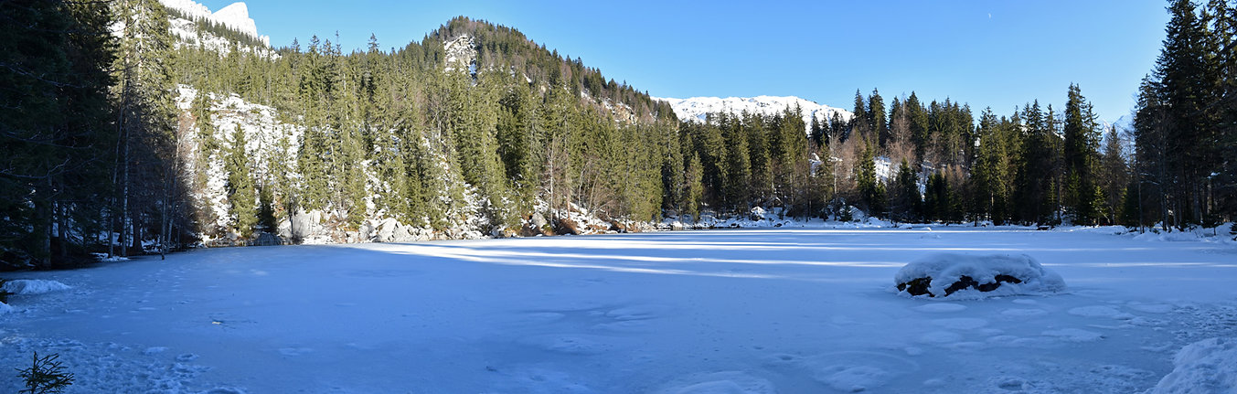 lac vert - passy - plaine joux - hiver