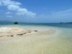 Grand cul de sac marin - île la biche