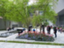 New-York - MOMA - jardin