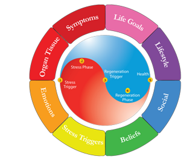 Dr. Stéphane Provencher aka Dr. Awesome explains the circle of healing according to Meta-Health University and Lifestyle Prescription