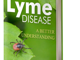 Common Co-infections of Lyme Disease?