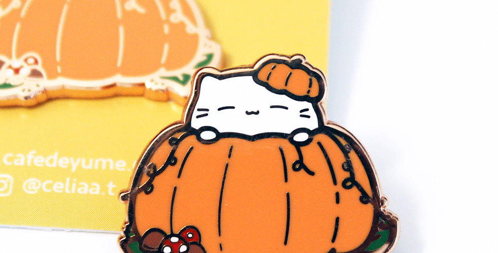 Oct 2019 - Pumpkin Cat (B-Grade)