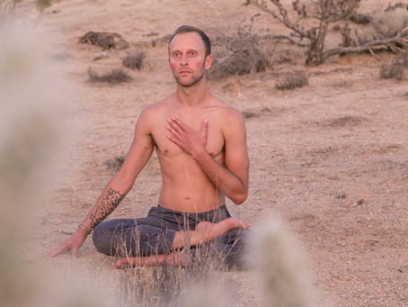 A Personal Journey With Ahimsa (Non-harming)