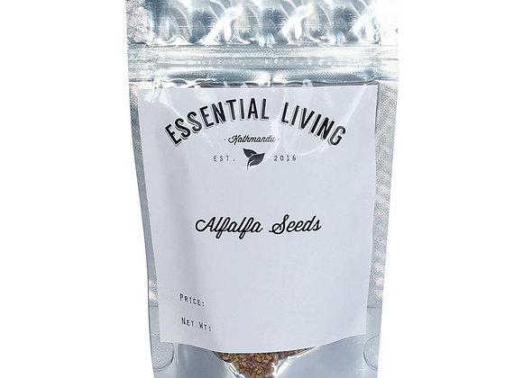 Alfaalfa seeds