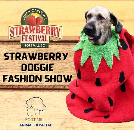 Strawberry Doggie Fashion Show IG.png
