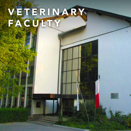 VETERINARY FACULTY