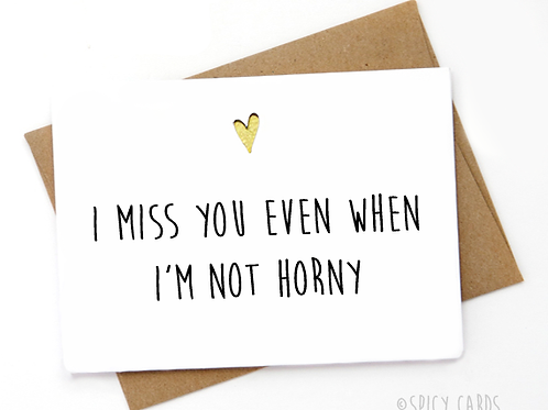 I Miss You Even When I'm Not Horny