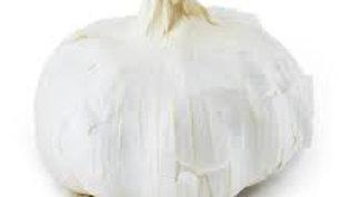 Garlic 5 pack