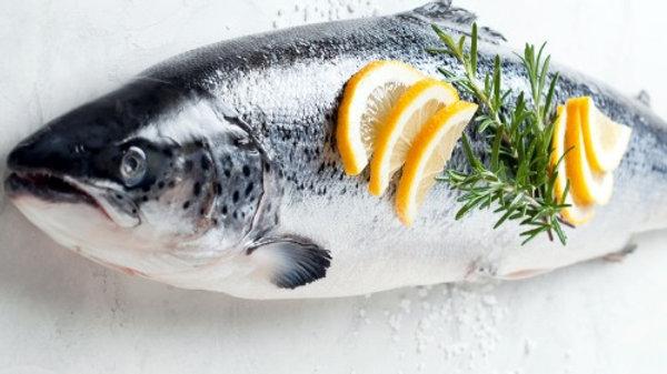 Fresh Salmon Whole