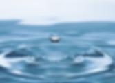 Screen Shot 2020-02-02 at 6.36.17 PM.png