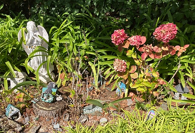**Fairy Village with 11 fairy houses & f