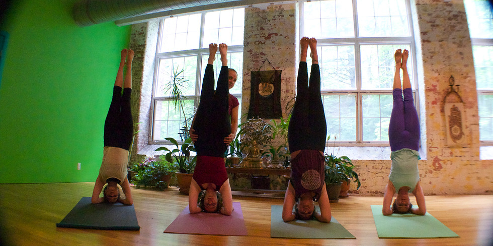 Hatha Yoga Teacher Training Immersion