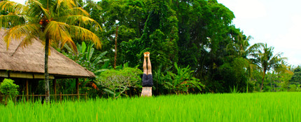RICE PADDY HANDSTAND