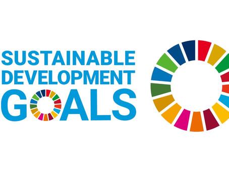 【SDGs】企業規模に関係なく国際標準の経営が求められる時代に