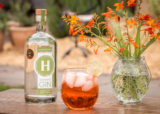 Hussingtree Asparagus Gin - Aperol Gin F