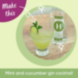 Hussingtree Gin Cocktail-Mint And Cucumb
